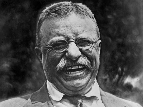 Theodore-Roosevelt-d